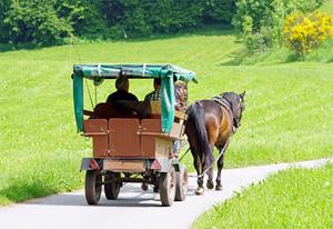 Pferdegespann und Wagen